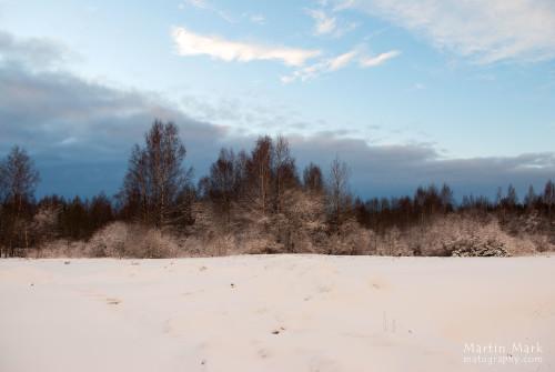 Talvevärvid