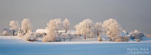 Karge jaanuarilõuna Raudsepa külas