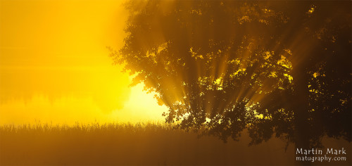 Päikesekiired Rõuge Suurjärvest