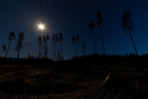 Kuuvalge öö