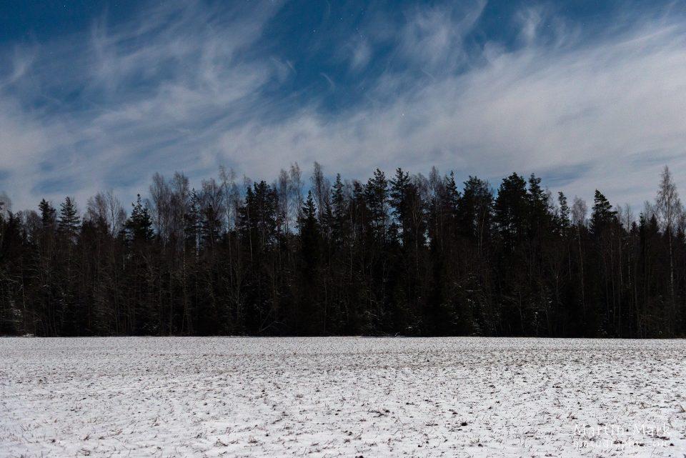 Eestimaine talveöö
