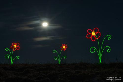 Lilled emadepäevaks