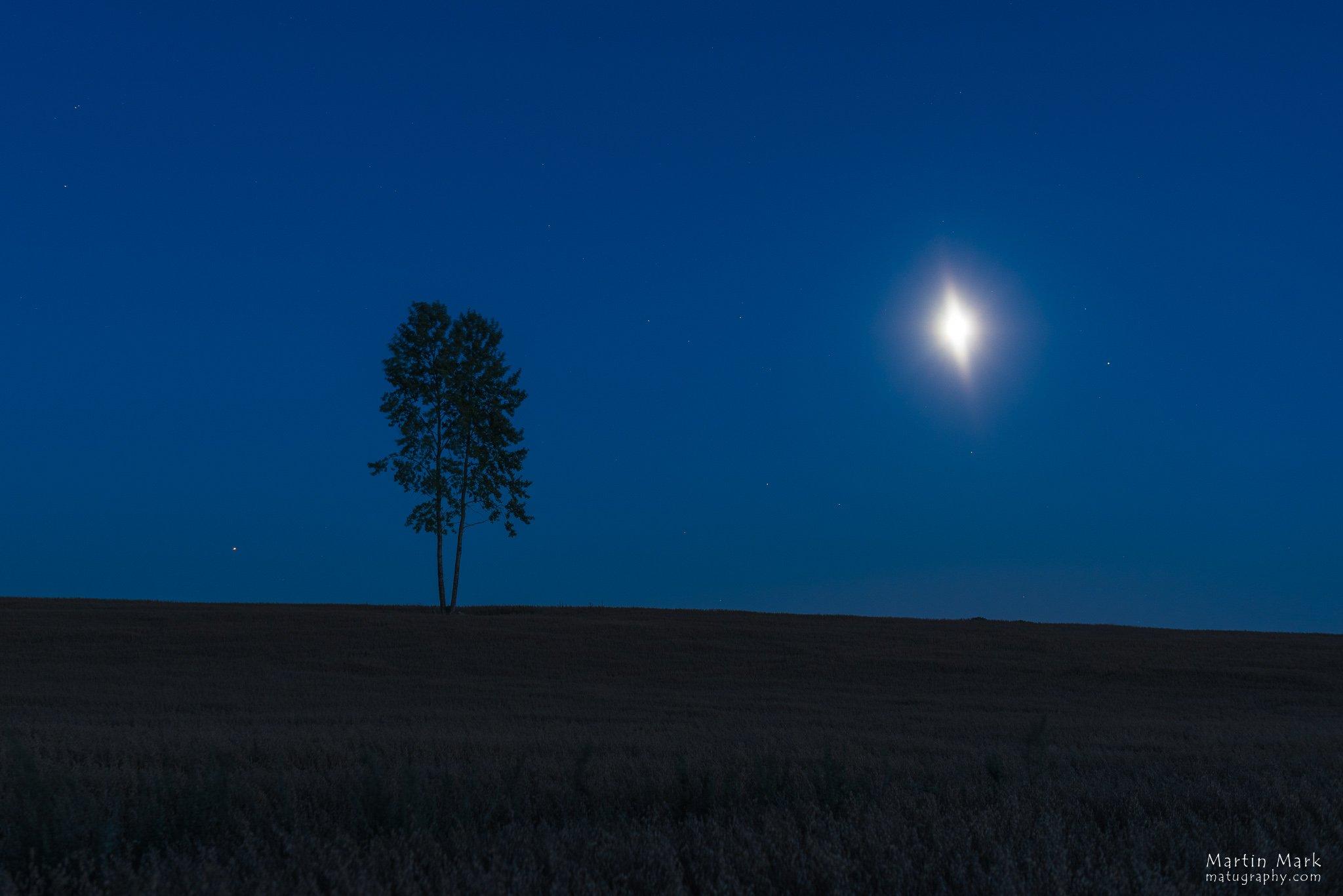 Marss, puu, Kuu, Saturn